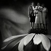 Three Fairy Godmothers Photograph by Rebecca Sherman - Three Fairy Godmothers Fine Art Prints and Posters for Sale
