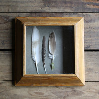wooden shadow box frame