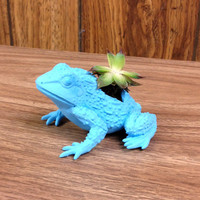 Up-cycled Small Blue Frog Planter