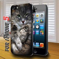 Cute Cat in box Black Case for iphone 5
