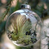 Handcrafted Forest Floor Ornament