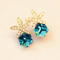Starfish Aqua Box Earrings 061005