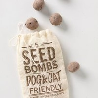 Seed Bombs?-?Anthropologie.com