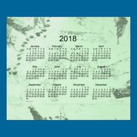 Old Green Paint 2018 Wall Calendar Posters from Zazzle.com