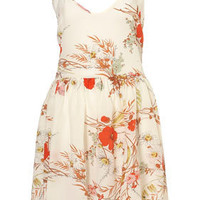 Poppy Skater Dress By Boutique - Slips & Sun Dresses - Dresses - Apparel - Topshop USA