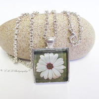 African Daisy Glass Tile Necklace, Flower Glass Necklace, African Daisy Photo Pendant, Flower Pendant Necklace