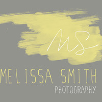 Photography Logo and Watermark : Yellow, Lemon, Lime, Signature, Initial, Brush Stroke, Text, Simple, Minimal