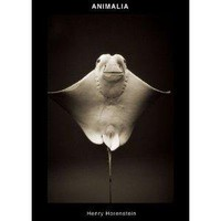 ANIMALIA [Hardcover]