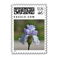Bearded Iris Postage Stamps from Zazzle.com