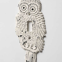 Anthropologie - Hoot, Hoot Switchplate, Single