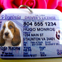 Personalized Pet ID Tags Virginia Driver License by ID4Pet