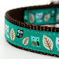 Owl Dog Collar in Teal Green/ Hootie by daydogdesigns on Etsy