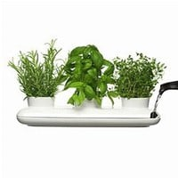 Sagaform Herb Pot Trio | OnWineTime.com
