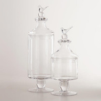 Bird Apothecary Jars Collection - World Market