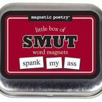 LITTLE BOX OF SMUT MAGNETIC POETRY