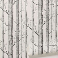 Anthropologie - Woods Wallpaper