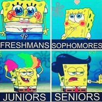 funny high school quotes for freshmen - Google Search
