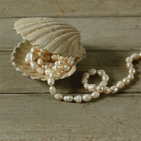 French Seaside + Coastal Home Decor Accents â?? Scallop Seashell Box - Cast Iron