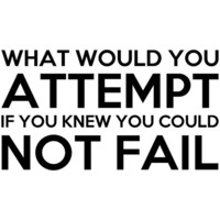 What Would You Attempt Not Fail vinyl decal wall by SpiffyDecals