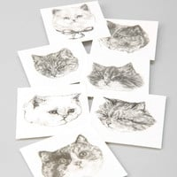 Harriet Gray Cat Temporary Tattoos