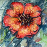 Nepal Cinquefoil Flower in Watercolor, Pen & Pencil | Linandara - Mixed Media on ArtFire