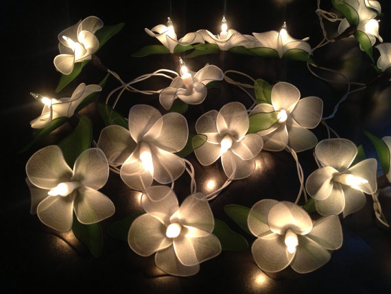 Fairy string lights for home decor,party from Icandylighting on