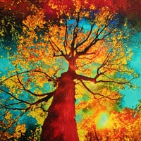 Night sky, 10x10, wood mounted Fine art photo mixed media, tree art, Autumn art, Fall art, gift