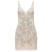 Isabella v-neck embellished dress - Forever New