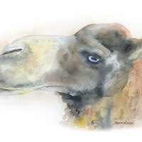 Camel Watercolor Painting Original Watercolor 9 x 12 Dromedary