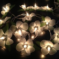 Fairy string lights for home decor,party decor,wedding patio,20 pieces
