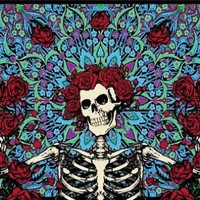 "Grateful Dead Skeleton & Roses Tapestry (60"" x 90"") #18:Amazon:Everything Else"
