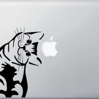 Cat - Whatcha Doin? - I Can Haz? - Macbook or Laptop Decal:Amazon:Computers & Accessories