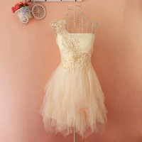 A 083124 aaa Embroidery lace tutu dress