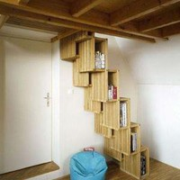 Stair Case Transformed Into a Book Case