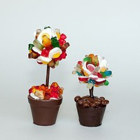 Pick And Mix Edible Sweet Tree