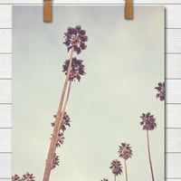 Streets of L.A. - Photographic Print - Palm Tree, Los Angeles, Mint, California, SoCal, Cali, Whimsical, Photograph, Wall, Art, Hanging,