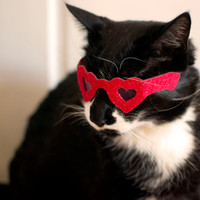 Heart Shaped Sunglasses for Cats / Valentine's Day Cat Glasses