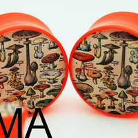 Vintage Book of Mushrooms BMA Power Plugs