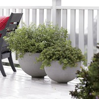 Ibarra Ficonstone Planters in Garden & Patio | Crate&Barrel