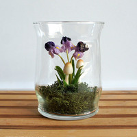 Tiny Purple Iris Woodland Terrarium by MissMossGifts