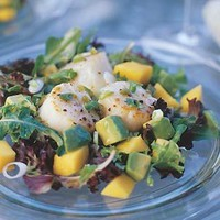 Scallop, Mango and Avocado Salad | Williams-Sonoma