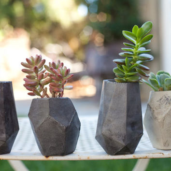 Geometric Concrete Succulent Cacti Planter Vase Collection
