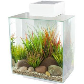 Fluval Edge 12-Gallon Aquarium with 42-LED Light, White