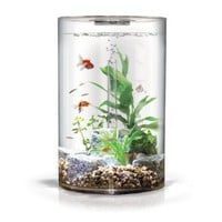 Amazon.com: biUbe Pure Aquarium with Halogen Light, Clear, 9 Gallons: Pet Supplies