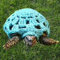 Crocheted Tortoise Cape