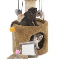 Cat Craft, #124910,  Kitty Starter Kit