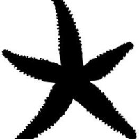 STARFISH Sticker Sea Ocean Beach Shell Sand Vinyl Decal | eBay