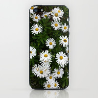 Daisies  iPhone & iPod Skin by Nikki Neri