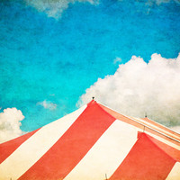Under the Big Top Art Print by Ann B.