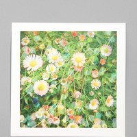 Cassia Beck After The Rain Art Print - Urban Outfitters